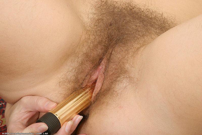 pic penic sex big sex porn images
