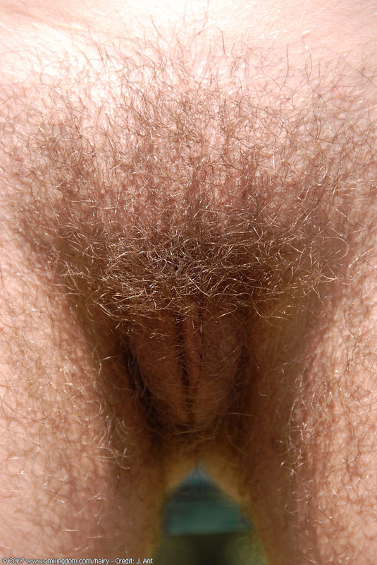 Nude female hairy crotches
