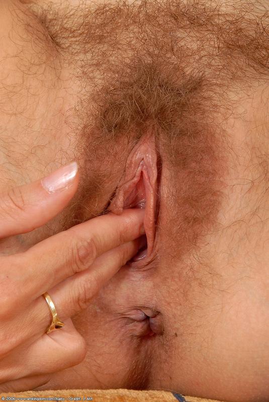 Dani daniels x pregnant erotica